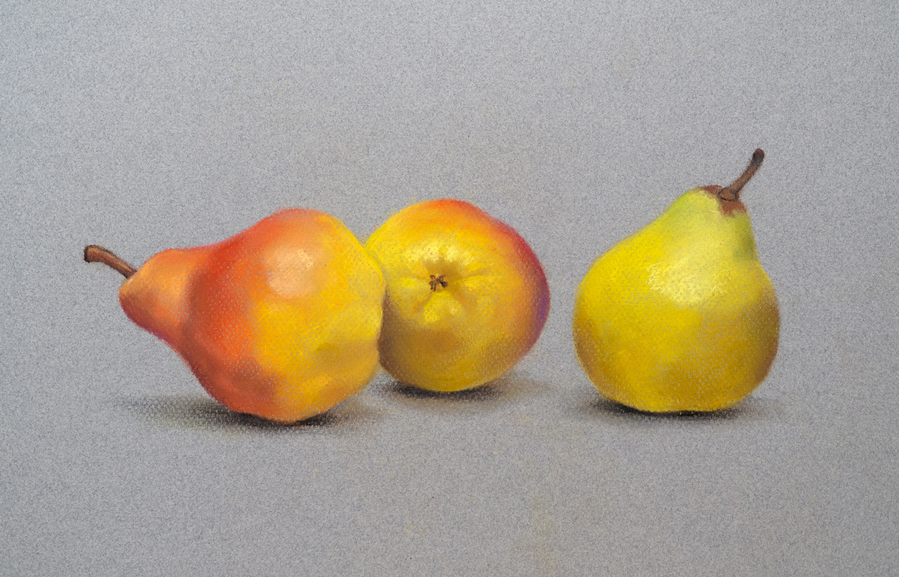 Three yellow pears in pastel